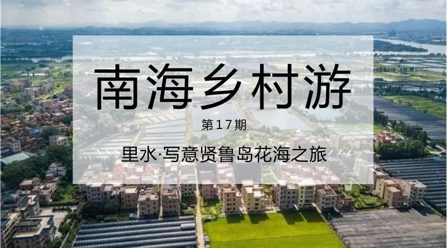 20171105冬日绿城飞花  谭浩深 (4).jpg