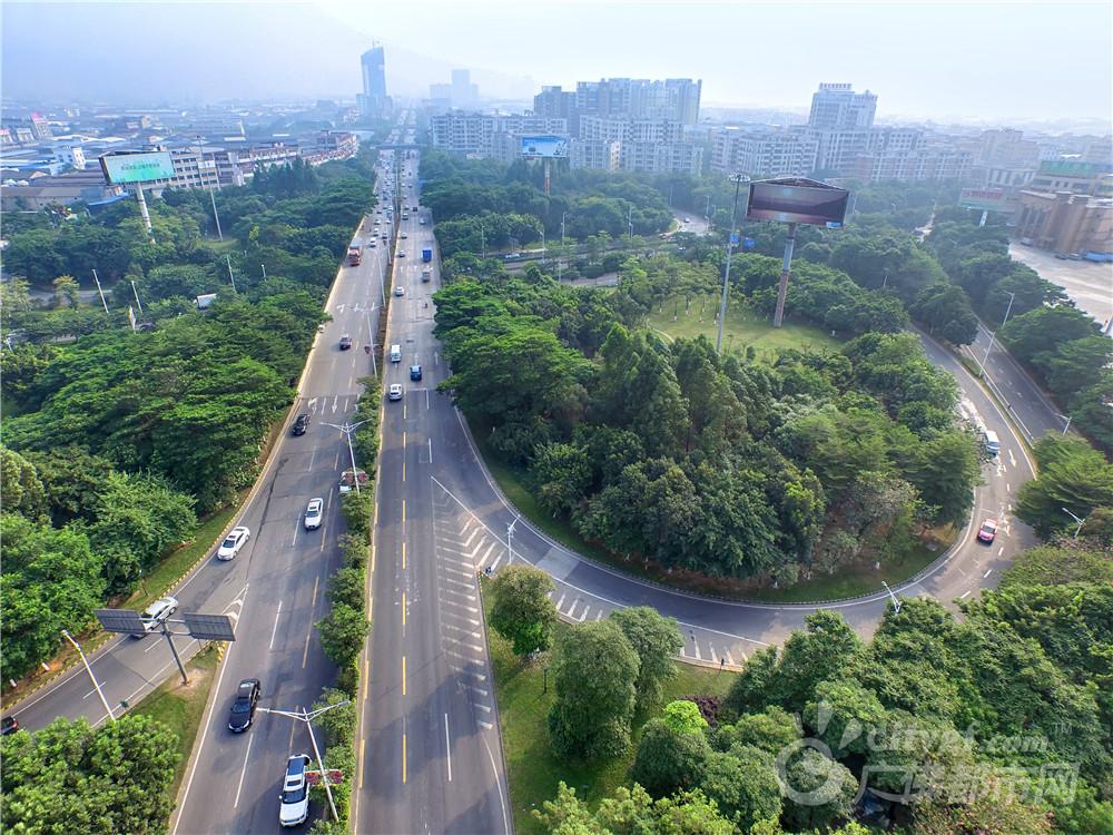 绿色大道 作者:方智恒 拍摄地点:大沥江夏立交。