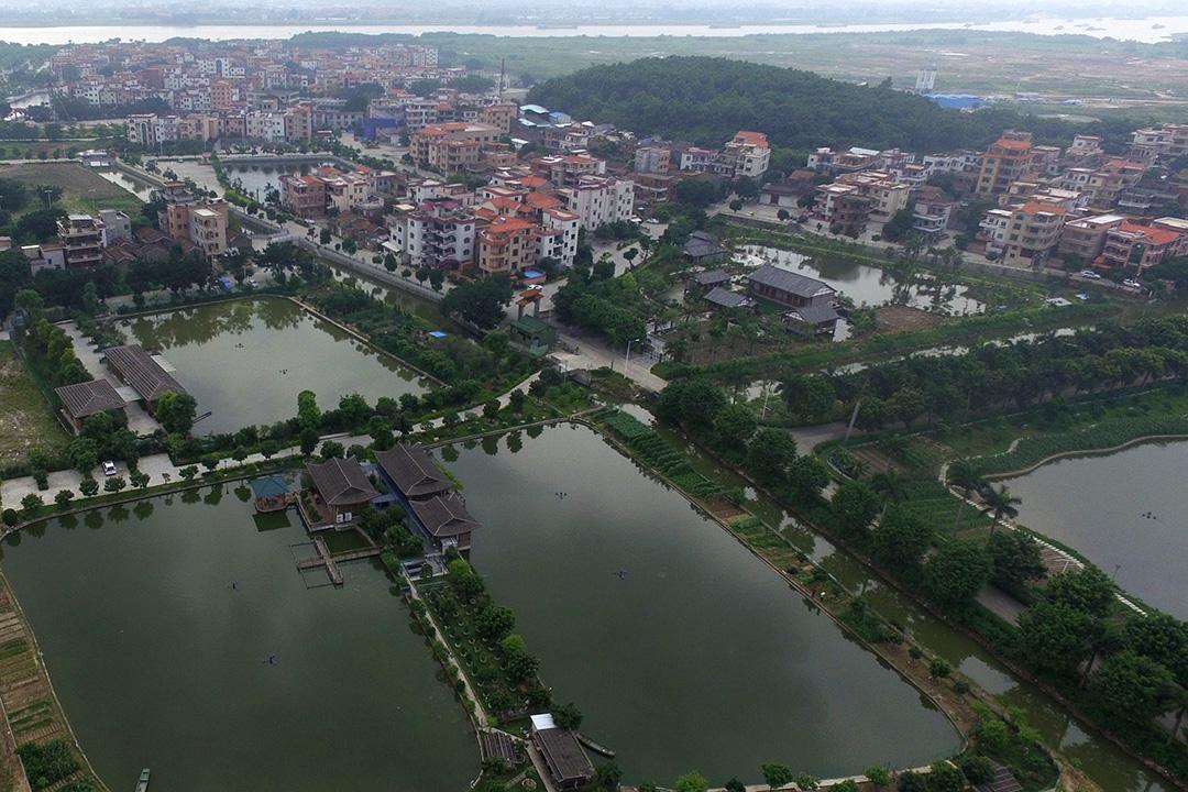 紫南村村口的公园(作者 龙上淳)