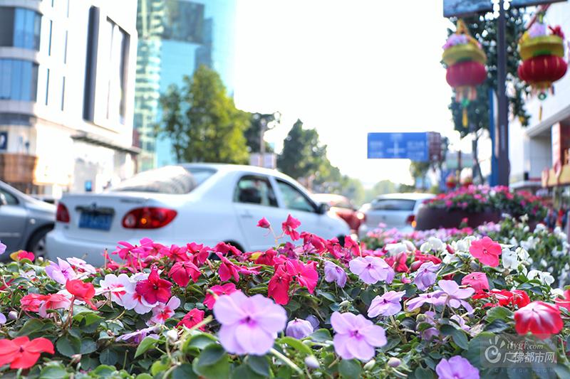 农历腊月24日,是我国传统节日——小年。小年的来临,也意味着春节正一步一步地靠近。多日的阴霾也被今天的暖阳驱散,气温逐渐回暖,经历一个冬天酝酿的花草也含苞待放。
