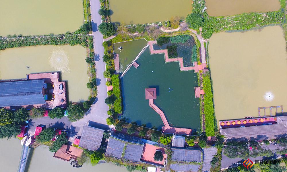 """南粤名山西樵山下,至今还保存一片被称为""""世间少有美景""""的桑基鱼塘,面积3000多亩。"""