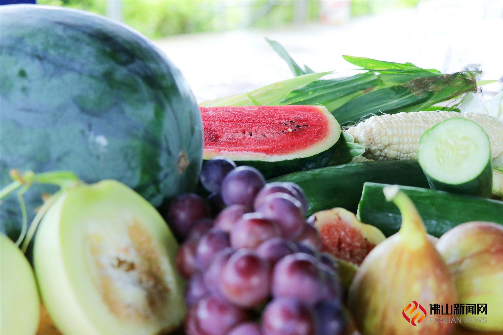 天气闷热,吃水果正当时。位于南海丹灶的禾盛隆生态园,300多亩的田地里多款时令水果相继成熟。