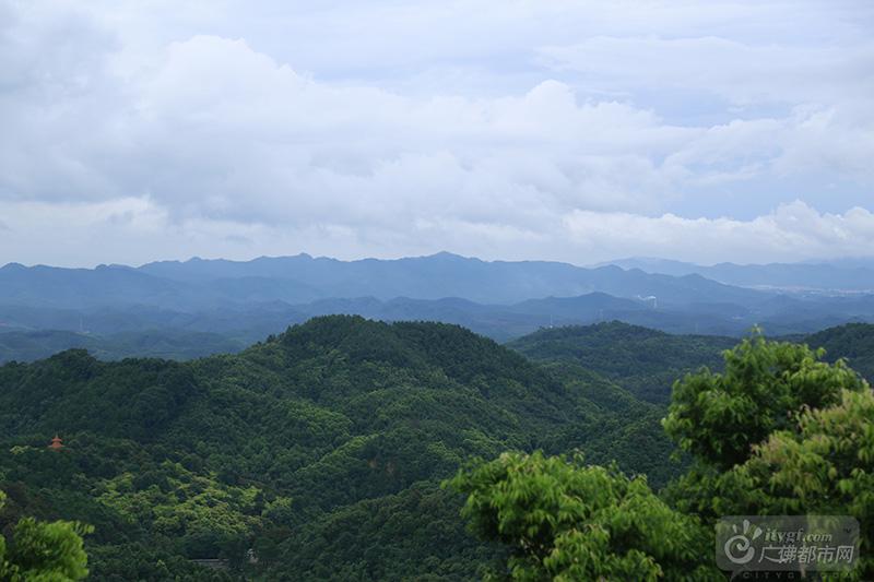 高明云勇森林公园——国字号世外桃源图片