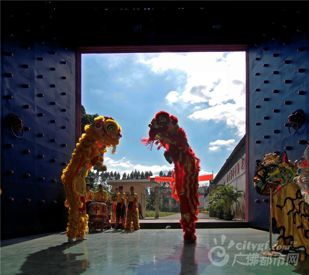 狮舞(摄于南海龙狮基地) 作者:梁斌