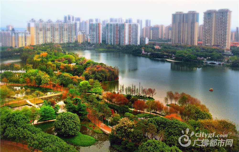 亚洲艺术公园位于威尼斯人棋牌游戏平台市发展区的中心,占地40公顷,其中水体面积26.6公顷。 作者:粤赣高速