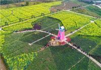 作品名称:翰林湖 拍摄地点:桂城 拍摄时间:2017.3.5  姓名:王维家 联系电话:13927770886_副本.jpg