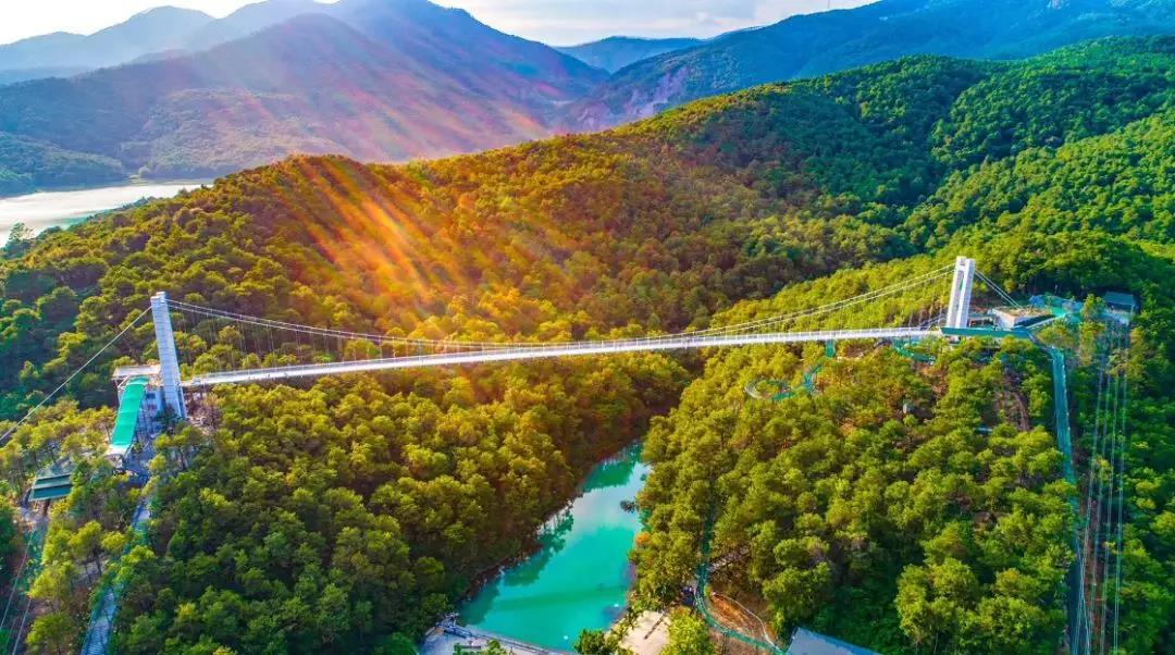 凌云山下,佛山盈香生态园四季有花,5D玻璃桥超惊险!