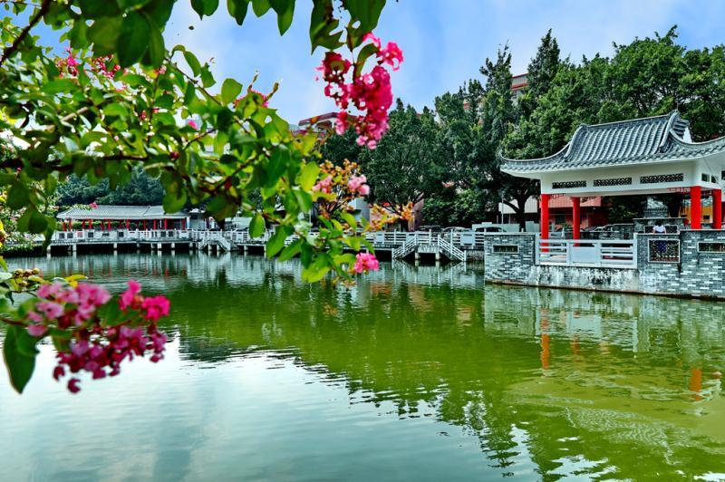 """东平河畔卧""""巨龙""""!这条滨水绿廊串联5公里水乡风韵"""
