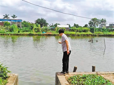 顺德一岁男童掉鱼塘 暖心邻居接力营救